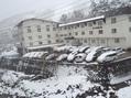 雪[i:4]が降ってびっくらこん