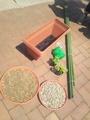 趣味の園芸 収録
