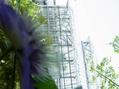 関西の植物園巡り