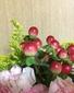 切り花のヒペリカムを挿し木。