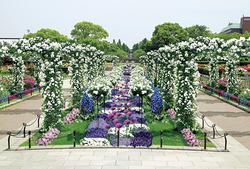 「未来のバラ園」(イメージ)。市の花であるバラと草花の華麗な共演による色彩のコンチェルトが楽しめる「未来のバラ園」