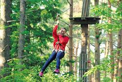 「フォレストアドベンチャーよこはま」森の木々を生かした自然共生型のアウトドアパークです