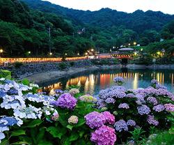 「形原温泉あじさい祭り」(6/1~6/30)
