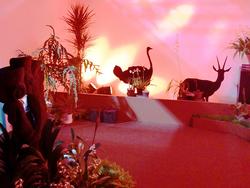 企画展示「ふしぎなアフリカの蘭たち」。神秘的なランが並んでいた。