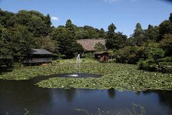 園内の奥池