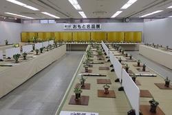 昨年の日本おもと名品展。全国大会だけあって見事な万年青が勢ぞろい