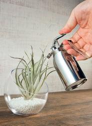観葉植物などの葉水にぴったり