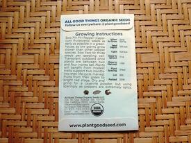 ピリピリ ― ブラジル発ポルトガル経由アフリカ着のトウガラシ ピリピリの種(0日目)
