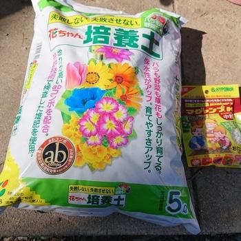 はじめてのサフィニアを鉢にいっぱいに咲かせるチャレンジ 使う土と元肥