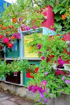 タテニワ・垂直栽培 収納ボックスでMin・スイートチャリオット栽培  2019/5/13 花が咲きはじめた