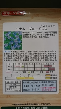 お初リナム★青いお花が見れるかな?😍