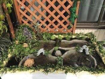マナハウスのビオトープ♪( ´▽`) 水草の植え込み開始♪( ´▽`)