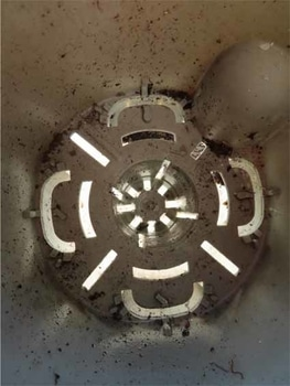 鉢植えシクラメンの植え替え 底面給水鉢って?