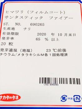 ヒマワリ・サンタスティック🌻 〜チャレンジ2020〜🎵
