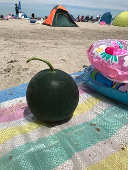 家族が育てる枝豆を勝手に観察してみよう 2020年7/24 相馬市の海にきました