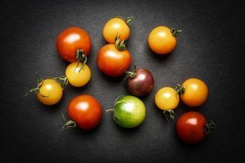 4色のミニトマトで畑デビュー