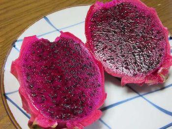 無加温でドラゴンフルーツ(赤肉種) 初物実食