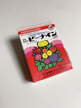 葉ボタン、タネから育ててみる❗️(一部、矮化剤使用アリ) 『ビーナイン』使用🧪