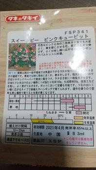 2020 初めてスイートピーを育ててみる 12/12 発芽までの日数を種袋で確認