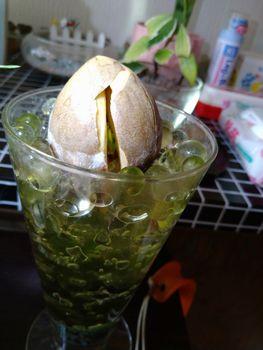 アボカドの成長記録 ぷらす パイナップル もうすぐ発芽?
