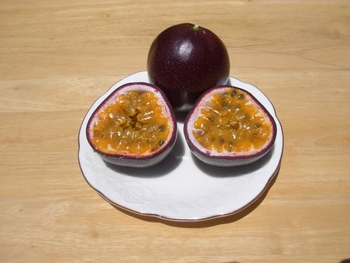 パッションフルーツの緑のカーテン 10月 パッションフルーツの中味(果肉)