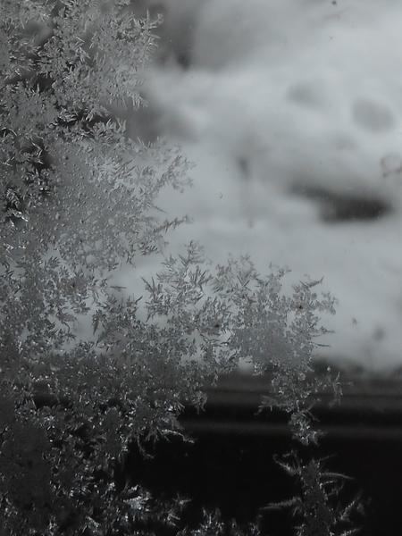 今朝 外気温―11℃、無加温の室内気温0℃でした🐧 2重サッシの内側に出来た氷結?