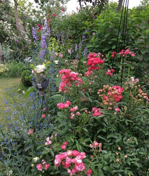 清々しいお庭