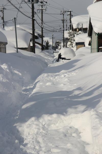 裏の脇道にはスタックした車が埋もれ  除雪車両も入っていません。   ほとんどの道が2