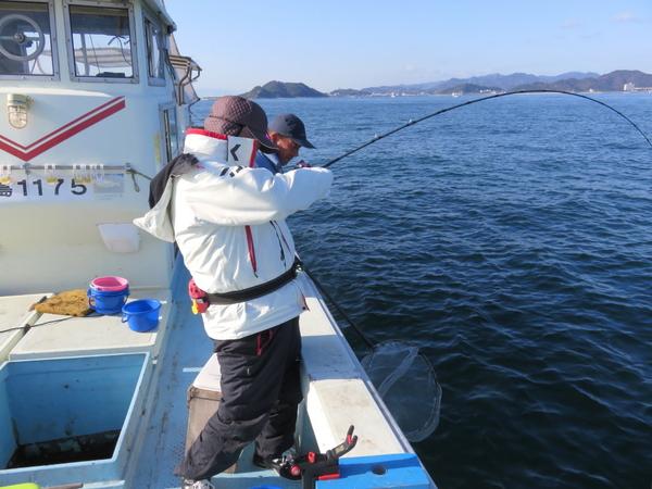 12月15日(金) 鳴門海峡でハマチ~ブリ釣り 釣友の竿に大物がHIT???