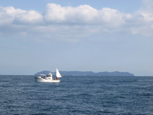 12月15日(金) 鳴門海峡でハマチ~ブリ釣り 前方に見える島は「くにうみ神話の島