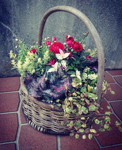 「花材」 ・ミニバラ ・ロータス ・レックスベゴニア ・花かんざし ・ワイヤープラン