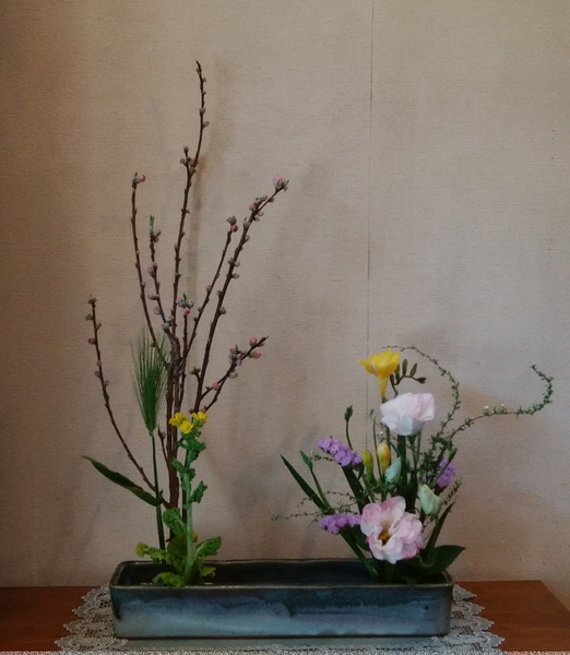 「春はそこまで」📷20180212 お花屋さんでは もう(2/7)桃の枝が並んでいたので いろ