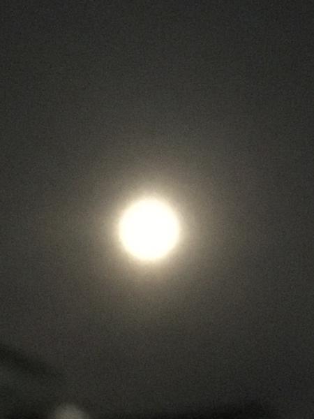 20時頃の月