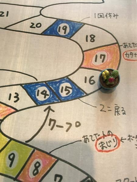2/3 お散歩カメ吉さんの瓶碁くんが開花(^O^)/ 瓶碁くんは【双六(4進む)・びんご】