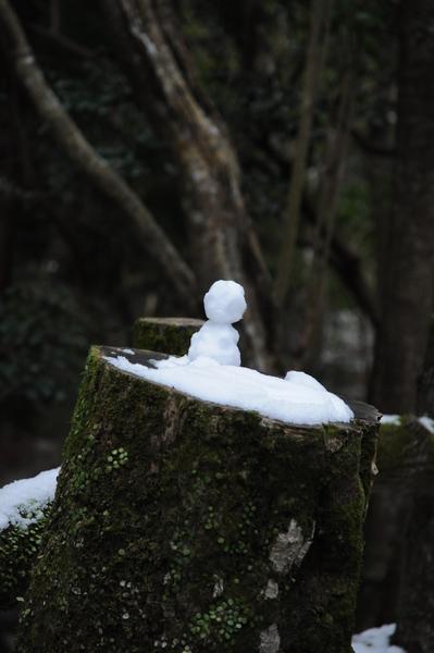 もののけ姫の木霊 みたいです。