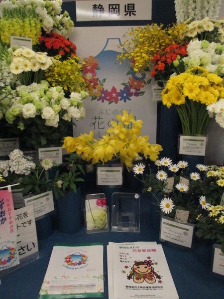「第67回関東東海花の展覧会」より静岡県展示。 2.3撮影。