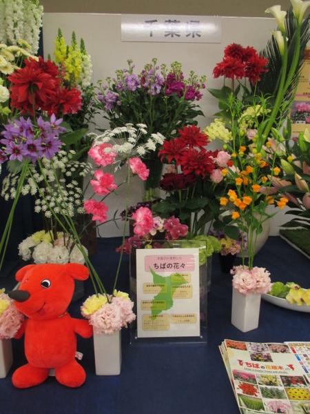「第67回関東東海花の展覧会」より千葉県展示。 2.3撮影。