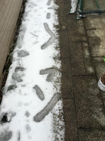 2/2 雪の後のベランダの不思議な模様
