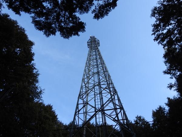 雑木林にそびえ立つ鉄塔。 いい感じ。  2018.2.2