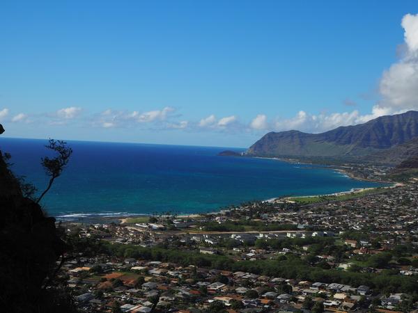 登山道  からの 眺め