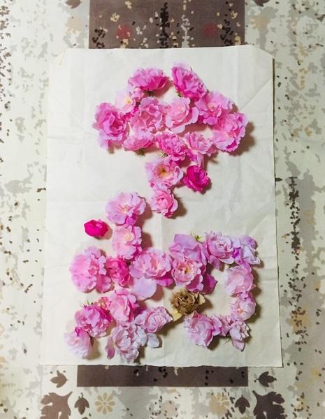 令和元年記念にスパニッシュビューティーの花で作りました。 良い香りがするピンク色