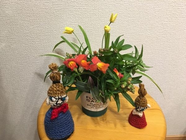 ミーにも入ってもらいました キンギョソウの切り花