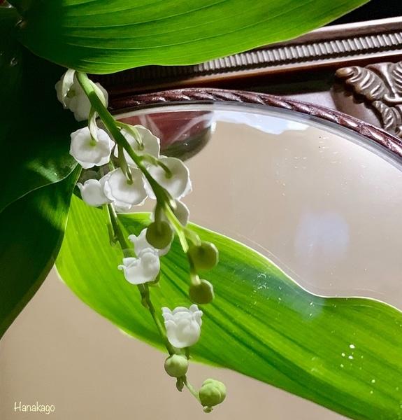 🎼スズラン *花を愛する芸術家や著名人の心情を知ると親しみが持て、花の魅力は奥深い