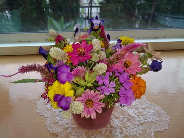 にわのお花を生けました。 ジニア  トレニア  センニチコウ  ケイトウ  マリーゴール