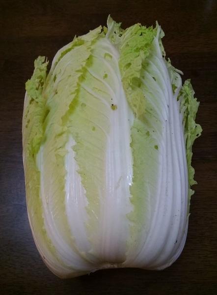 モツ鍋しました~ キャベツより白菜を入れるのが好きです~💚
