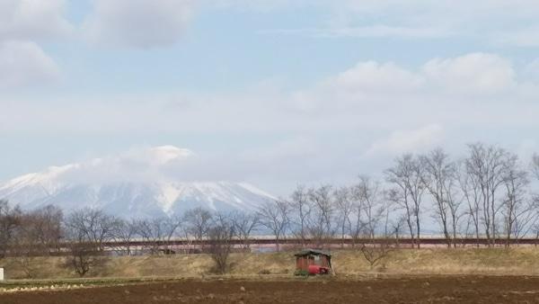 今日の「2019年3月16日」の 散歩コースの景色です。📷パチリ☆ 穏やかな天気の一