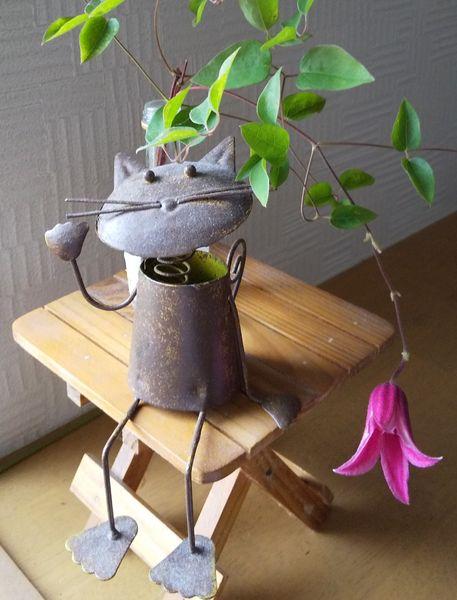 最後のプリンセスダイアナ 切り花にしました🎵