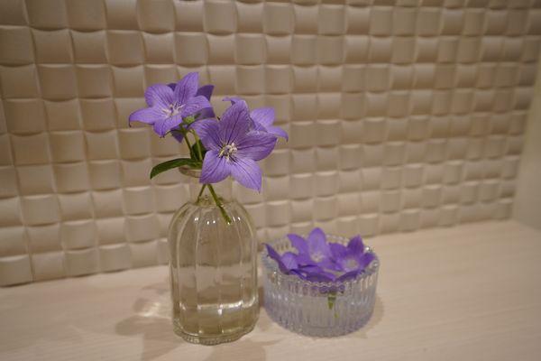 タイトル:次の蕾を太らせるために刈り取られた花々 花材:桔梗 花器:ダイソー