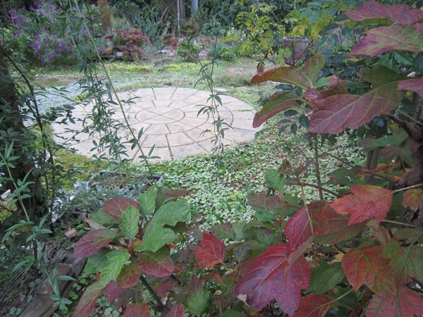 紅葉の裏庭