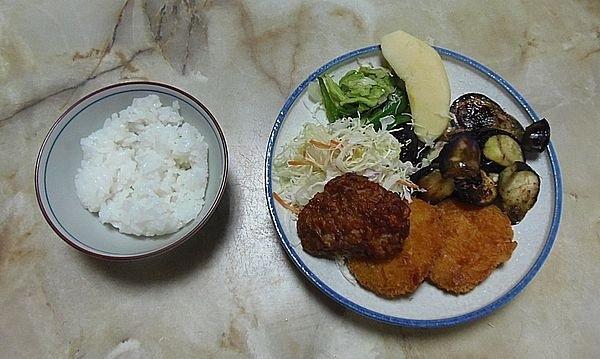 食事療法MS②267日目